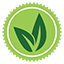 veggie-logo